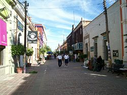 Tlaquepaque. Street in downtown..jpg