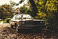 To Found Old Car (214660863).jpeg