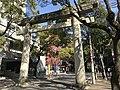 Torii of Kashii Shrine on Kashii-Sando Avenue.jpg