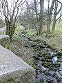 Tref y Nant Brook - geograph.org.uk - 756696.jpg