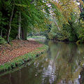 Trent and Mersey Canal at Bishton, Staffordshire - geograph.org.uk - 1556990.jpg