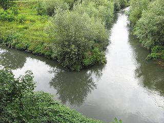 Przemsza river in Poland
