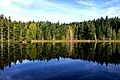 Trout Lake Reflection 1 (15517322725).jpg