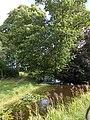 Tuin van de Boschplaatse Blijham.jpg