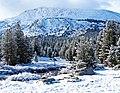 Tuolumne River, Yosemite High Country 5-15 (23747618516).jpg