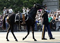 US Navy 040609-N-5471P-013 Symbolic of a fallen leader who will never ride again, the Caparisoned horse is led down Constitution Ave., following the Caisson carrying the body of former U.S. President Ronald Reagan.jpg