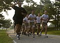 US Navy 040722-N-5526M-013 Petty Officer 2nd Class Diver Lippman leads a class of Naval Sea Cadets through a rigorous 8 mile run during Diver-EOD Special Operations Program training at the Naval Amphibious Base Little Creek Nor.jpg