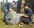 US Navy 100309-N-7498L-001 Gas Turbine System Mechanic Fireman Justin Munger, left, and Fire Controlman 2nd Class Justin Wong gather leaves and debris during the Joint Base Pearl Harbor-Hickam installation-wide base cleanup.jpg