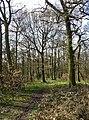 Upper Fell Greave, Bradley, Huddersfield - geograph.org.uk - 364832.jpg