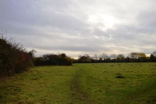 Upwood Meadows nature reserve in the United Kingdom