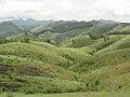 Vagamon Meadow 1.jpg