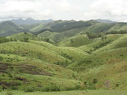 Vagamon Meadow 1