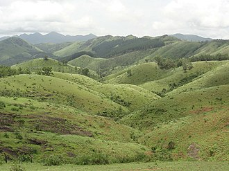 Vagamon - Vagamon Meadow 1