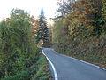 Valle Trebbia-Strada Provinciale 48 del Fregarolo.JPG