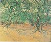 Van Gogh - Olivenbäume.jpeg