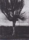 Van Gogh - Weide.jpeg