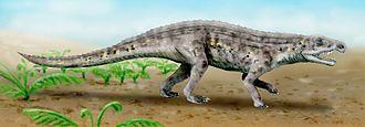 Ornithosuchidae - Life restoration of a Venaticosuchus rusconii