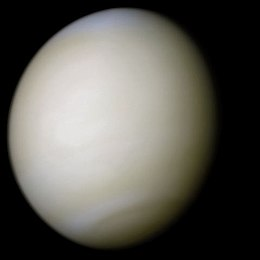 Venus in approximately true colour, a nearly uniform pale cream, although the image has been processed to bring out details.[၁] The planet's disc is about three-quarters illuminated. Almost no variation or detail can be seen in the clouds.