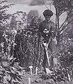 Vida Goldstein planting in 1911 (cropped).jpg