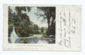 View in Spring Grove Cemetery, Cincinnati, Ohio (NYPL b12647398-62902).tiff