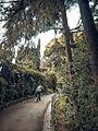 Villetta di negro-29.jpg