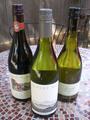 Vins capsulesavis.png