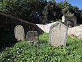 Vlachovo Březí, židovský hřbitov, náhrobky, 03.jpg