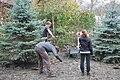 Volunteering (8620163864).jpg