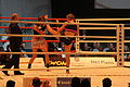 WKA World Championschips 2011 549.jpg