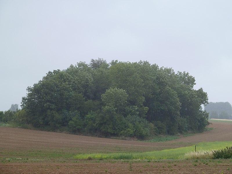 Tumuli de Mirteaux, Wasseiges, Belgique