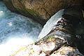 Wasserfall-laussabach0019.JPG