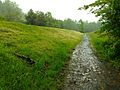 Watchung Reservation History Trail 2013-05-19.jpg