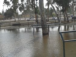 Water in Beersheba Stream - 07.jpg