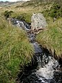 Wee waterfalls in Gleann Dubh - geograph.org.uk - 246029.jpg