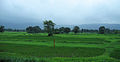 Western Railway - Views from an Indian Western Railway journey on a Monsoon Season (31).JPG