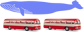 Whale measures as two buses.png