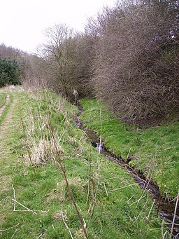 Whisperdales Beck - geograph.org.uk - 387839