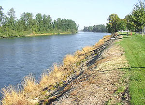 Willamette River - The Willamette River at Harrisburg
