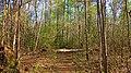 Winston County, AL, USA - panoramio (22).jpg