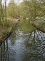 Wolbecker Tiergarten (1).JPG