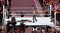 WrestleMania 31 2015-03-29 19-57-12 ILCE-6000 0155 DxO (17928544848).jpg