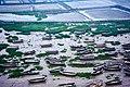 Xiapu, Ningde, Fujian, China - panoramio.jpg