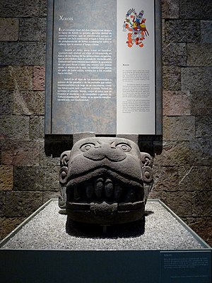 National Museum of Anthropology (Mexico) - Image: Xolotl head