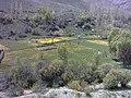 Yush road Minak 3 - panoramio.jpg