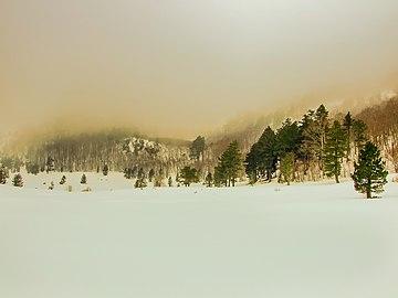 Zima pod Orjenom.jpg