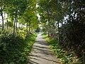 Zottegem Oude Trambaan Houtkanten op talud (3) - 277451 - onroerenderfgoed.jpg