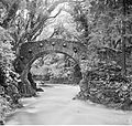 """Bridge of one rounded arch over river in woods, seven bosses round arch"" = Foley's Bridge, Tollymore (9248163576).jpg"