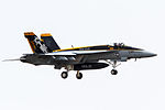 'Mace 200' F-A-18E(Block2) New CAG Bird on final for R-W19(1). (8584436045).jpg
