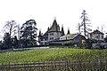 Échandens, Switzerland - panoramio (1).jpg