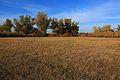 Вид на север - panoramio (7).jpg